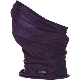 Regatta Multitube II Herren purple potion